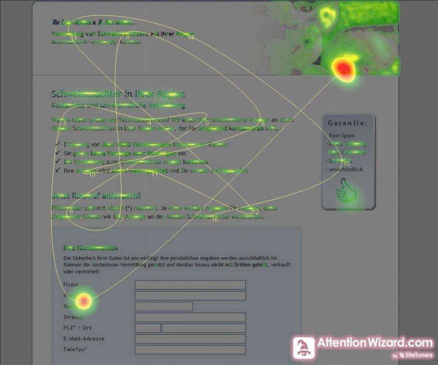 Eyetracking Simulation durch den Attention Wizard